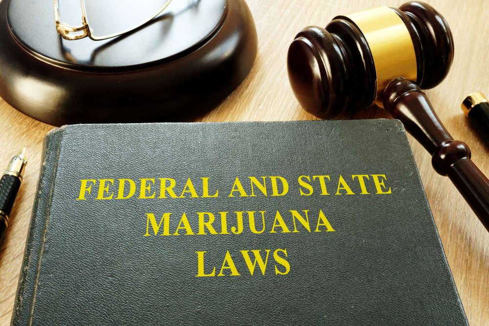 federal and state marijuana laws book with gavel
